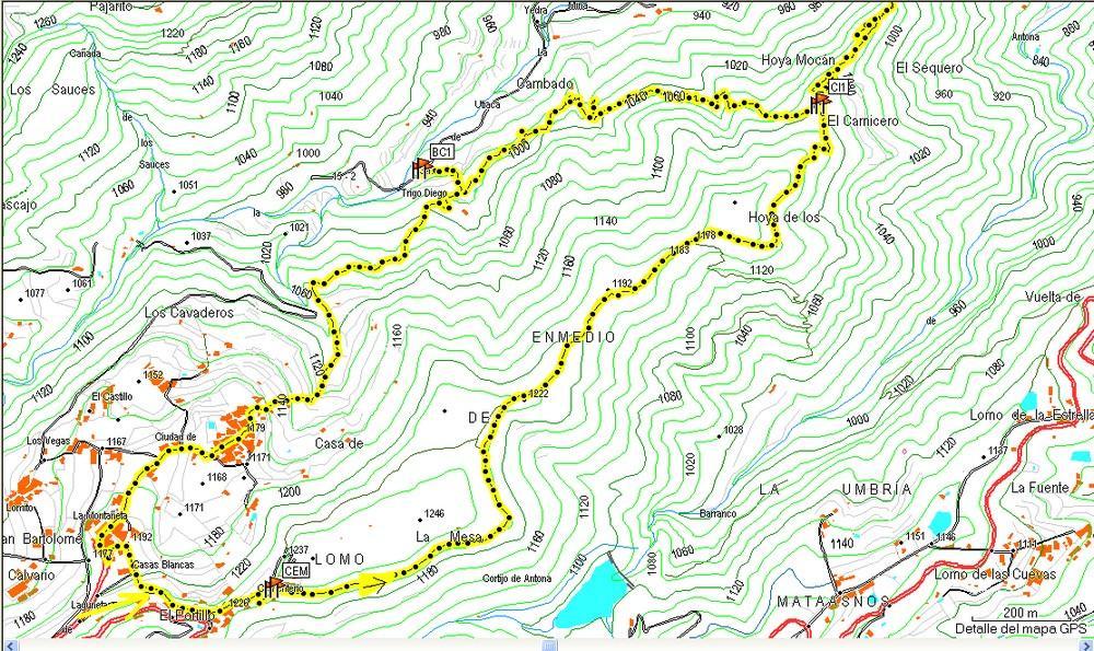 Mapa 1 Taginaste Azul en Las Lagunetas