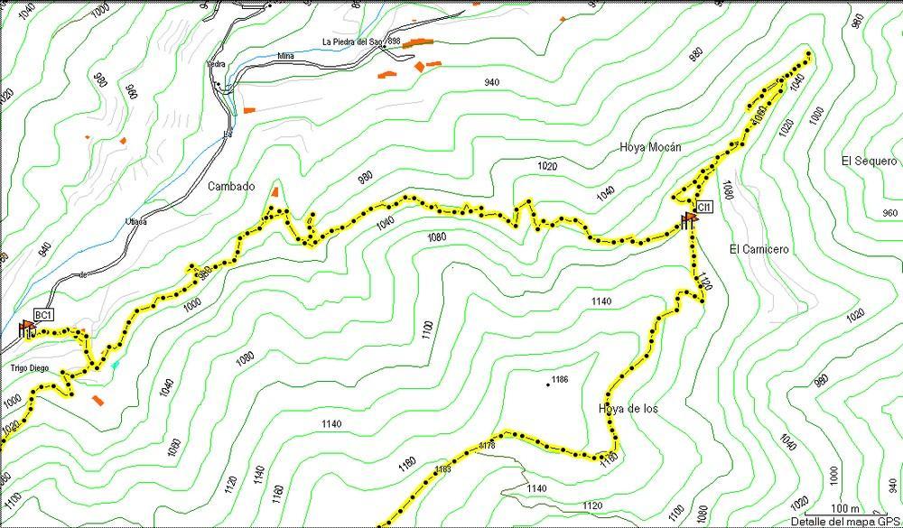 Mapa 2 Taginaste Azul en Las Lagunetas
