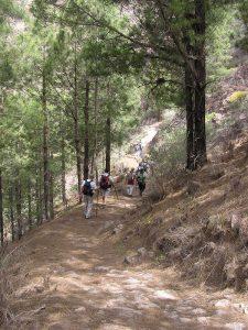 Tramo del camino Artenara-Acusa Verde