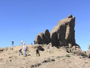 Roque La Rana