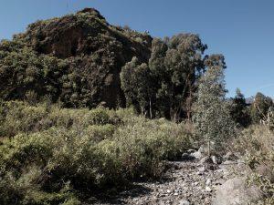 Cuevas el Roque San Miguel