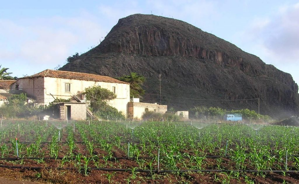 Hacienda Hoya de Pineda
