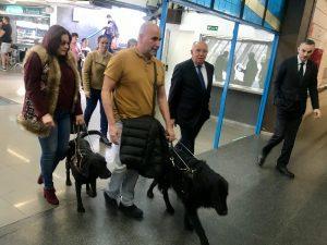 El Cabildo y Global habilitan asientos específicos para personas con discapacidad visual que viajen con perros guía